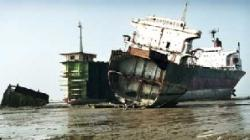 cargo moldovenesc