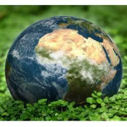 control emisii de carbon