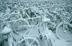 Copenhaga in alb