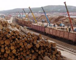 lemn-siberia.jpg
