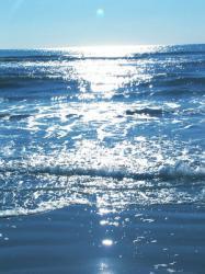 oceanele lumii