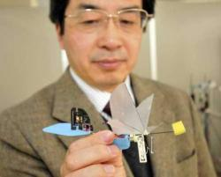 robot-colibri