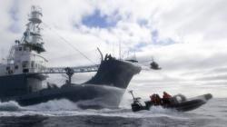 barca ecologista