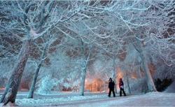cea mai aspra iarna