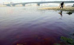 fluviul Galben