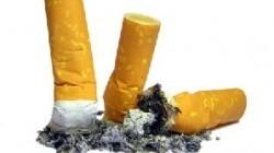 Fumatul duce la cancer pulmonar, infarct, insuficien?? respriatorie, dar si Alzheimer