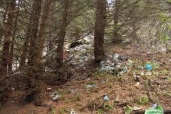 aruncarea gunoaielor