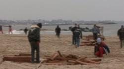 cherestea pe plaja