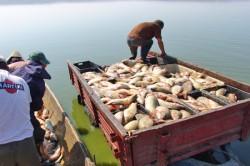 Pescuitul este interzis de pe 1 aprilie