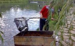 concurs de pescuit