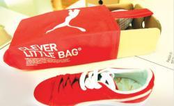 cutia de pantofi