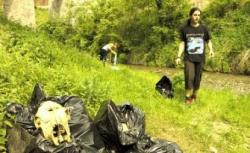 ecologizare voluntari