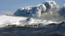 norul de cenusa