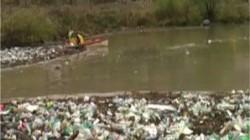 Poluare cu PET-uri pe râul Cerna: Lotul olimpic de caiac se antreneaz? printre de?euri