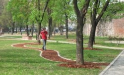 Timisoara: Peste 360 de notificari aplicate pentru neintretinerea zonelor verzi