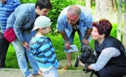 adoptii de caini