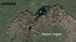 cel mai mare baraj