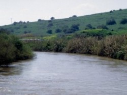 Poluare alarmant? în Harghita pe râul Olt
