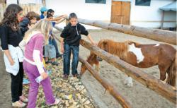 copiii rasfata animalele