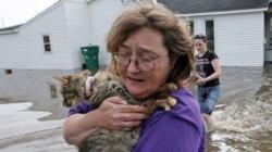 animale care au nevoie de ajutor