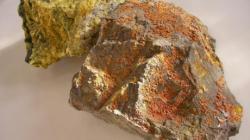 arsenicul