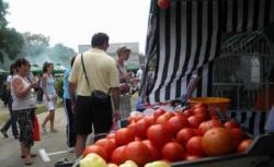 Festivalul paradaicilor