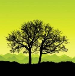 Noi măsuri de îmbunătăţire a sistemului de implementare a proiectelor pe mediu