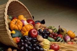 Centre de colectare legume-fructe
