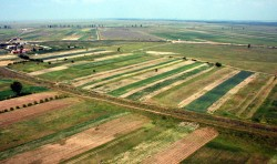 Deseurile agricole din judet vor fi folosite la incalzirea locuintelor din mediul rural!