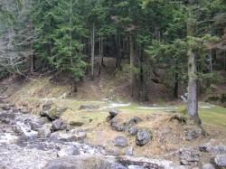 """Sub presiunea Directivei Europene """"Habitat"""", practicarea turismului in Parcul Natural Bucegi, reglementata prin hotarare de Guvern"""