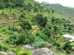 Reguli privind inregistrarea operatorilor in agricultura ecologica
