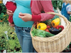 """Romanii nu stiu ce inseamna """"alimentatie ecologica"""""""