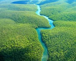 Amazonul a inregistrat, luna trecuta, cel mai mic nivel din ultima suta de ani