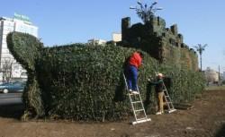 Peisagiştii plantează iederă pe Arca Verde