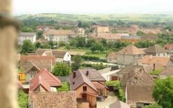 Avrigul are sanse sa devina primul oras 100% verde din Romania