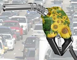 Prima statie de benzina cu plata direct la pompa