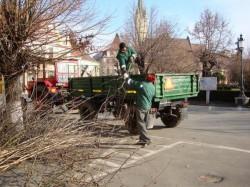 Medieşenii au scăpat gratis de peste 400 tone de gunoaie