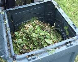 Elevii din Vanatori, Galati au invatat cum se obtine compostul