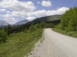 Drumul forestier, realizat cu fonduri SAPARD, este mult peste unele drumuri naţional
