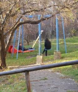 Mai multe parcuri din Andrei Muresanu au fost distruse