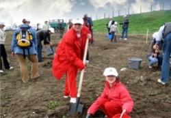 10.000 de copaci vor fi plantaţi sâmbătă în Ciurila