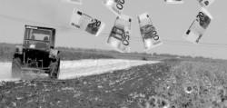 Fermierii români primesc în 2011 subvenții pentru culturile ecologice de 400 euro/hectar