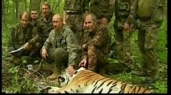 Azi începe în Rusia primul summit din istorie dedicat conservării unei specii de animale