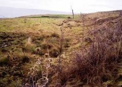 Alunec?rile de teren din comuna vâlcean? Livezi pun în pericol drumul de acces ?i un cimitir din zon?