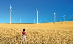 Investitiile in energii regenerabile au scazut in Europa si SUA, dar au crescut in China