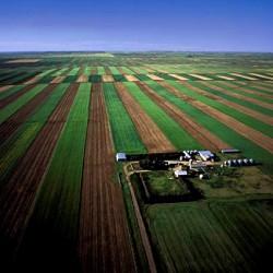 Peste 80% din teritoriul Romaniei, la limita incarcaturii cu nitrati