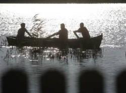Ordin privind prohibiţia pescuitului în anul 2012