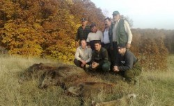 Vanatorii straini au impuscat mistreti si ursi in Prahova