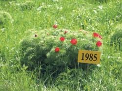 In 30 de ani riscam sa ramanem fara flora si fauna. Ministerul Mediului lucreaza la o noua editie a Cartii Rosii