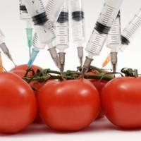 Sorin Minea (Romalimenta): Ar trebui interzise importurile de produse modificate genetic în România